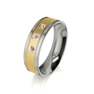 Titanium wedding rings - IN1526D